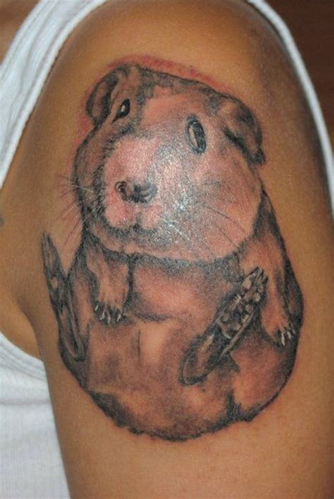 guinea pig tattoo guinea pigs and dr who on