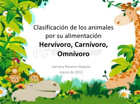 Imagenes De Animales Por Su Alimentacion | clasificaci 243 n de los animales por su alimentaci 243 n new