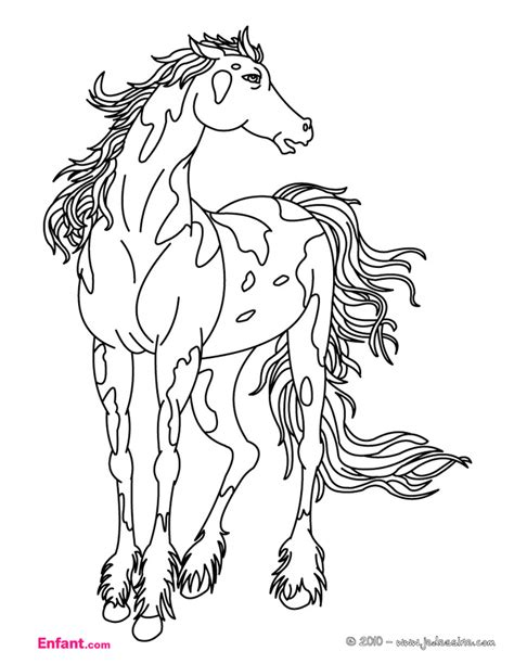 coloring pictures of wild horses coloriages pour fille le cheval