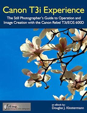canon t3i/600d experience user guide full stop books