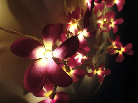 Flower Lights For Bedroom 35 Purple Frangipani String Lights Flower Lights Bedroom