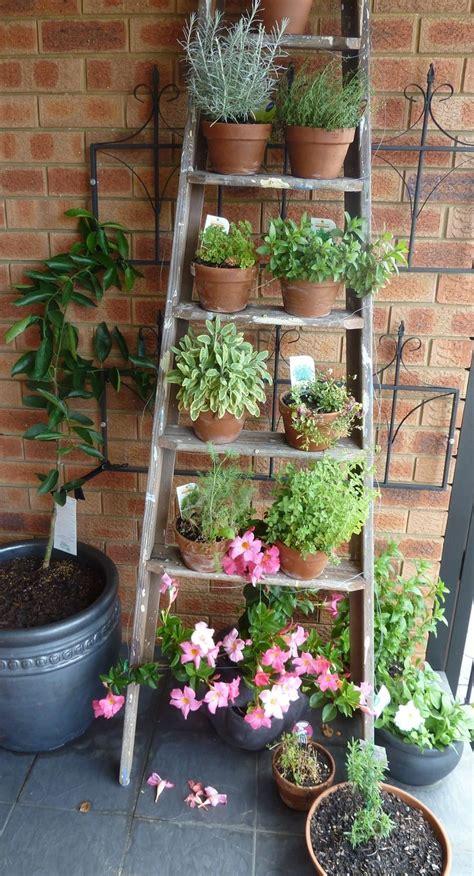 fresh beautiful indoor plant ideas for eco friendly 23201 creative idea diy brown old wooden garden ladders design