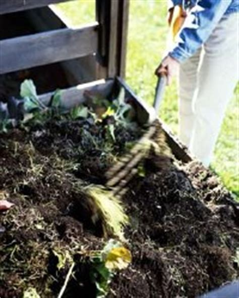 Composting For A Vegetable Garden Howstuffworks Is Manure For Vegetable Gardens
