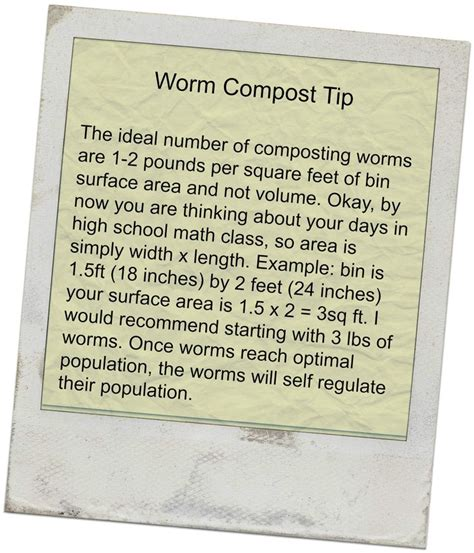 best compost worms best 25 worm composting ideas on worm farm