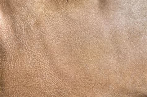 light leather light brown leather texture photohdx