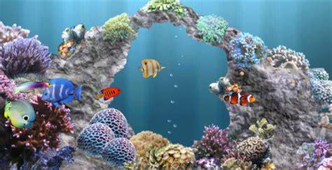 aquarium 3d live wallpaper youtube aquarium live wallpaper windows 8 wallpapersafari