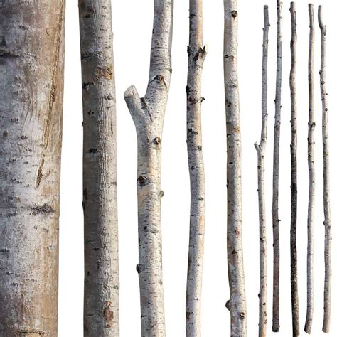 Artificial Flowers For Home Decoration by Decorative Branches Aspen Poles