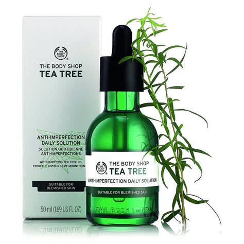 The Shop Tea Tree new arrivlas see what s new at tique a bou