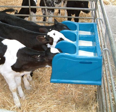 Feeder Calves calf feeders product images