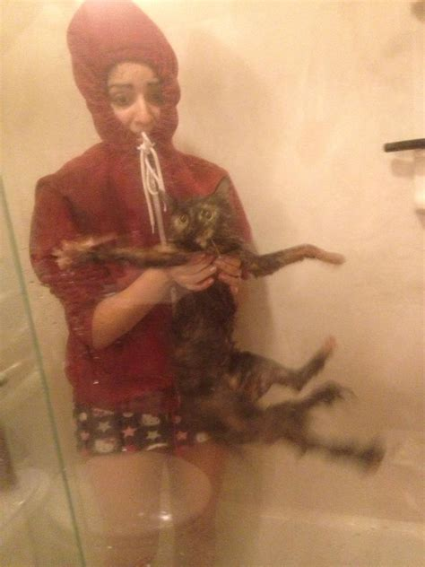 imgur bathroom my sister tried to give our cat a bath the cat was not pleased imgur