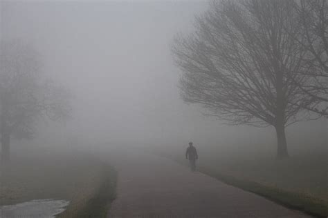 foggy s list of synonyms and antonyms of the word foggy