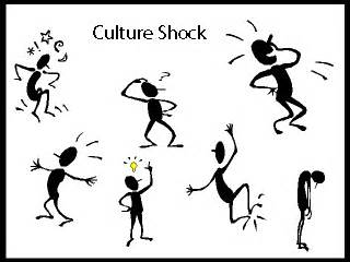 Click the link to find out a little more information about culture