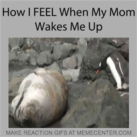 Dat Feel Meme - dat feel by ptguy meme center