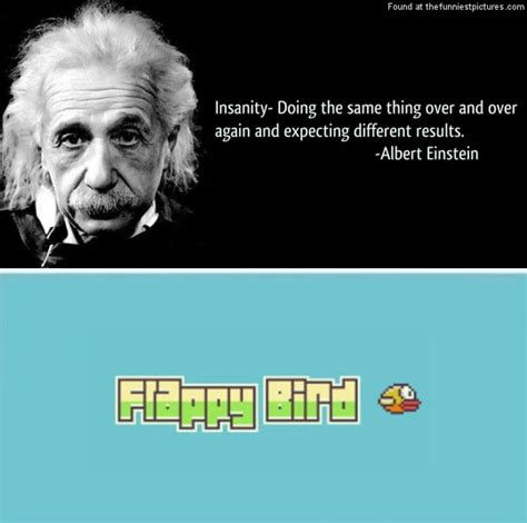 Albert Meme - einstein quotes bird quotesgram