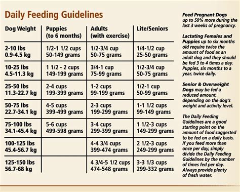 dog nutritional requirements table how to read dog food labels top dog tips