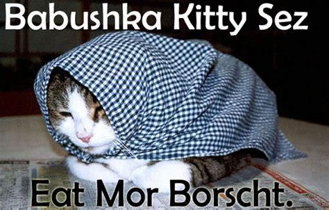 Russian Cat Meme - babushka meme cats