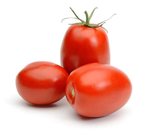 Plumb Tomatoes plum tomato pictures images and stock photos istock