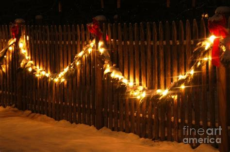 Garland Lights by Garland Lights Photograph By Amie Turrill Owens