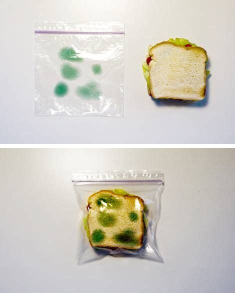 how to anti theft lunch bags