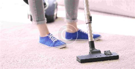 Upholstery Cleaning Services Perth Dry Cleaning Vs Steam Cleaning Which Is Best
