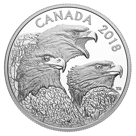 1 Oz Silver Eagle Mintage - 1 oz silver coin magnificent bald eagles mintage