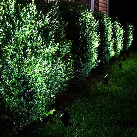 landscape spot lights 8w led landscape spotlight cool white 550 lumens led