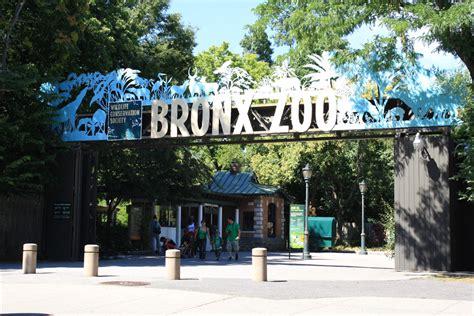 Garden City Vet Ny Bronx Zoo In Bronx Park In New York