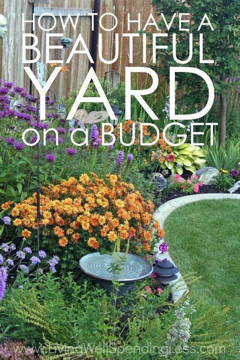 beautiful yard   budget landscaping