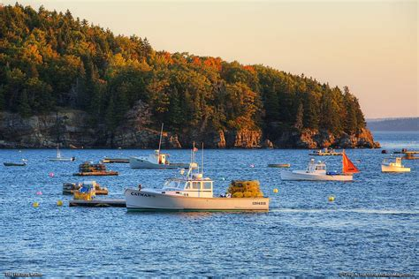 boat tours from southwest harbor maine bar harbor maine lobster boats in autumn