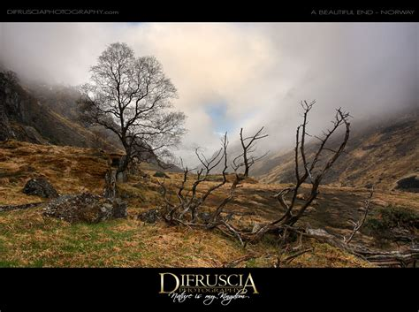 Landscape Photography Artists New Landscape Photography From Di