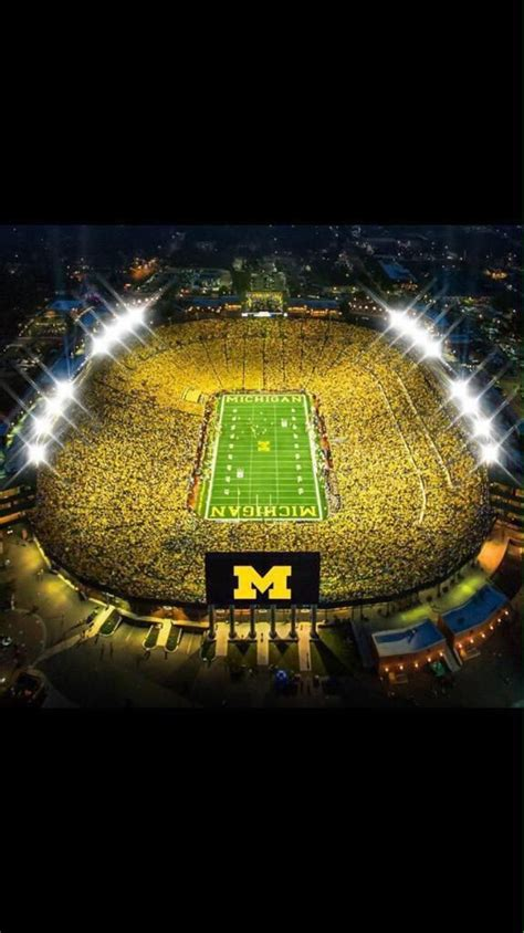 the big house 25 best ideas about wolverines on pinterest michigan wolverines michigan