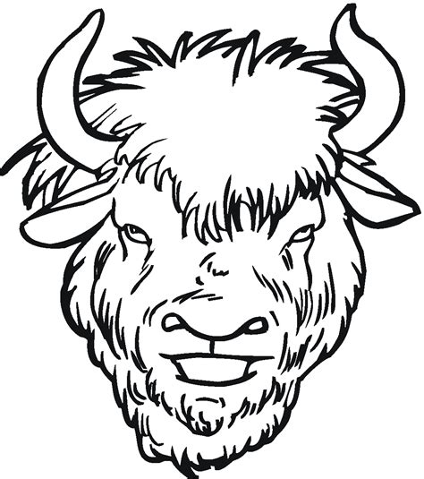 bison coloring pages nature coloring pages