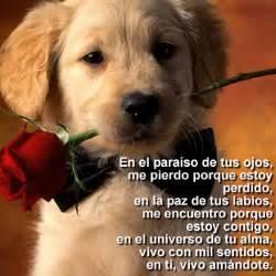 www descarga imagenes bonitas frases bonitas amorosas fannyjemwong s blog