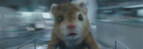 kia hamster song what song is in the kia soul turbo hamster commercial