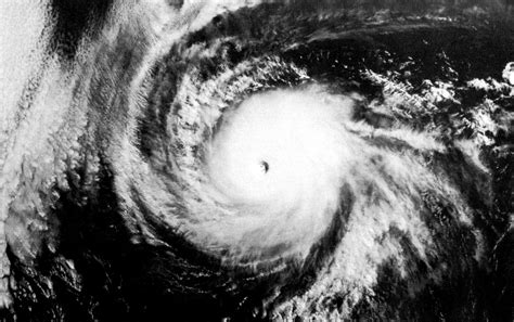 the white hurricane hurricane ava wikipedia