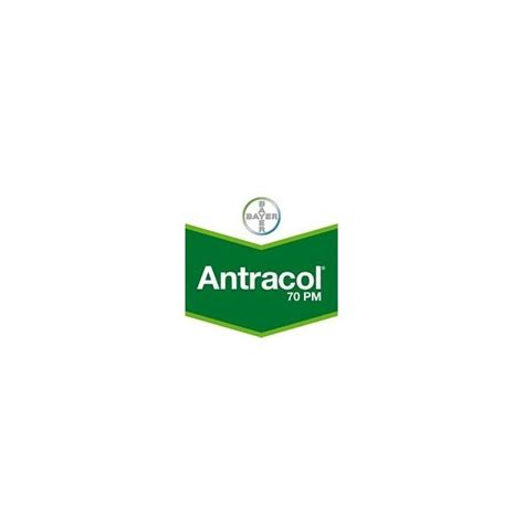 Antracol 1kg antracol 70pm fungicida bayer