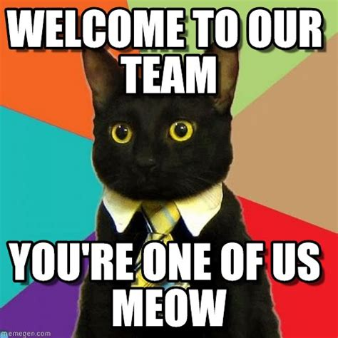Team Meme - welcome to our team business cat meme on memegen