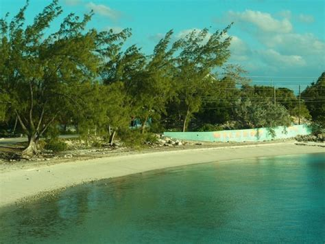 staniel cay yacht club cottages pigs at big major spot picture of staniel cay yacht club