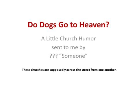 do dogs go to heaven do dogs go to heaven