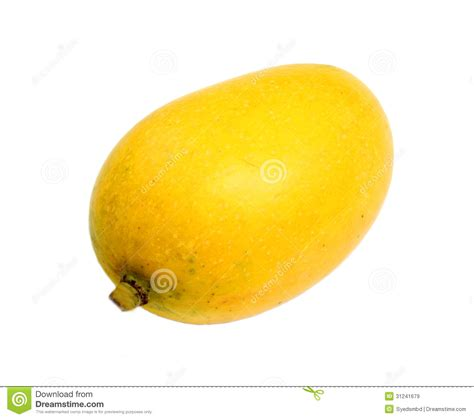 what color is a ripe mango ripe mango royalty free stock images image 31241679