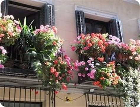 terrazze fiorite foto balconi fioriti piante appartamento