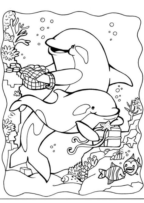 coloring pages dolphins dolfijn coloriages enfants pinterest coloring