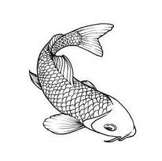 blue koi tattoo norman ok 1000 images about fish drawings on pinterest koi fish