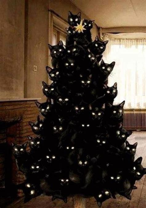 crazy cat lady christmas tree cats know your meme
