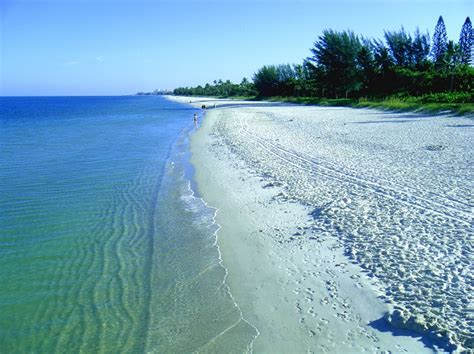 Florida S Most Popular Beaches Miami Beach Clearwater Beach And Ft   Free HD Wallpapers