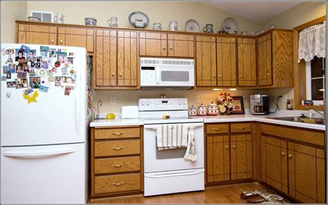 Types Of Cabinets For Kitchen Kitchen Fresh Types Of Kitchen Cabinets Types Of Kitchen Cabinets Lovely Types Of Kitchen