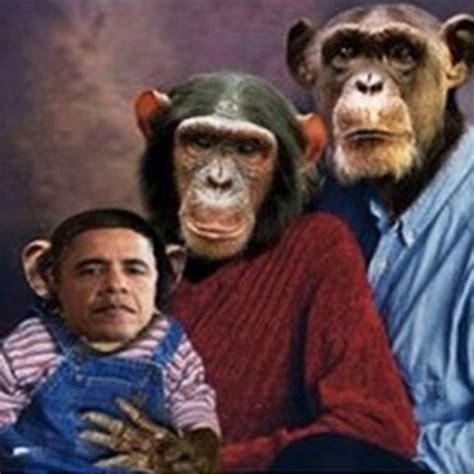 scimmia sedere rosso foto lo scimpanz 233 obama la foto delle polemiche 1 di 1