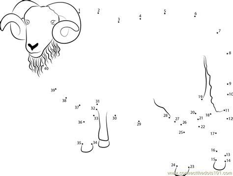 printable dot to dot sheep blackface ram sheep dot to dot printable worksheet