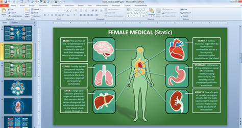layout body powerpoint top effective medical powerpoint templates for healthcare