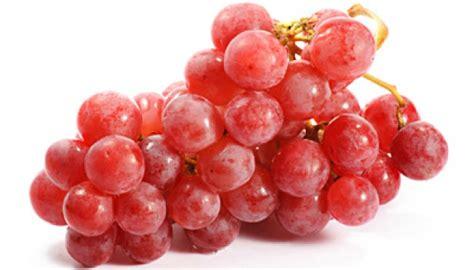 Getah Buah Merah anggur merah obat herbal kanker kelenjar getah bening